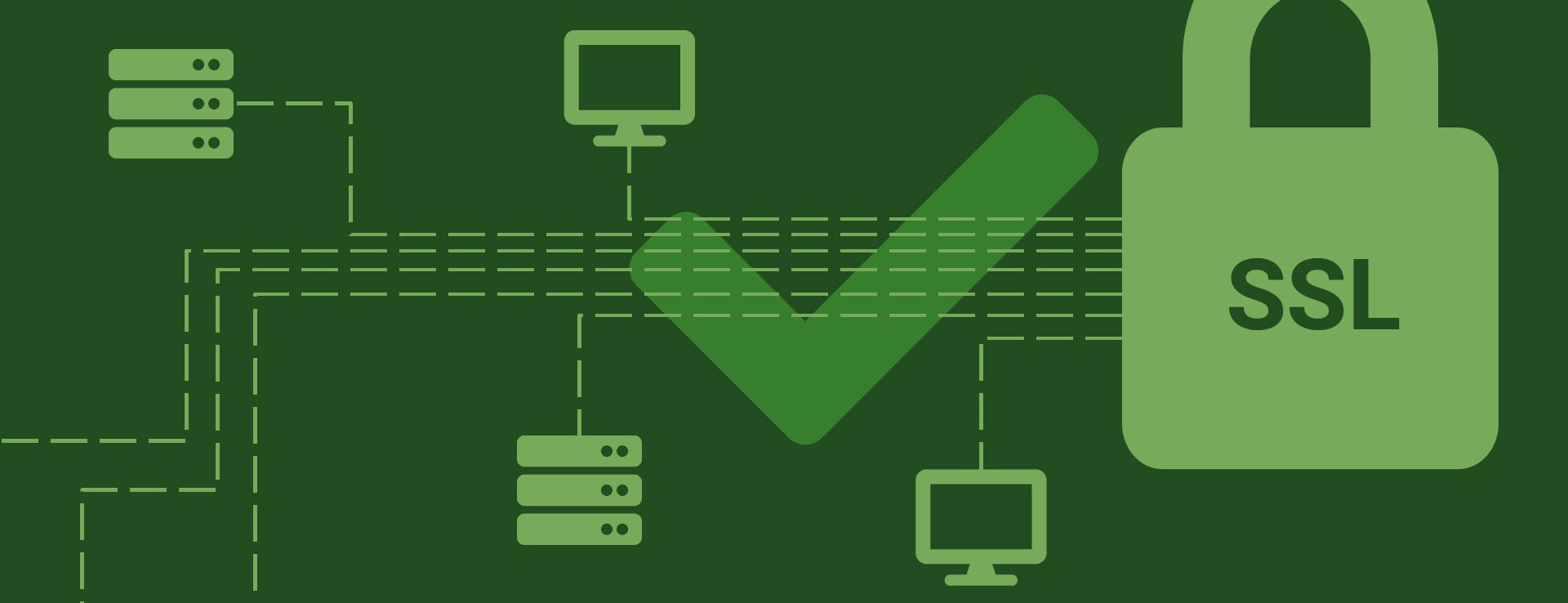 ssl certificaat is belangrijk voor je site